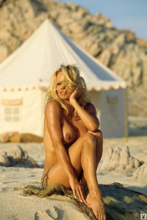Pamela Anderson The Naked Truth